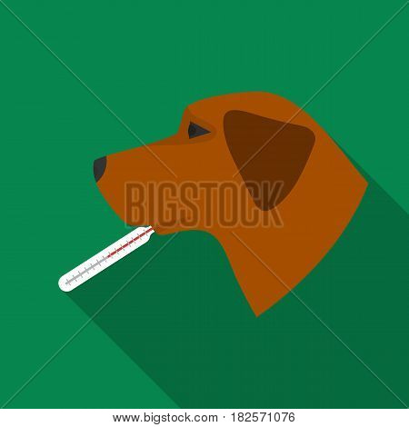Dog with thermometer icon in flate design isolated on white background. Veterinary clinic symbol stock vector illustration.