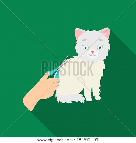 Grooming of a cat icon in flate design isolated on white background. Veterinary clinic symbol stock vector illustration.
