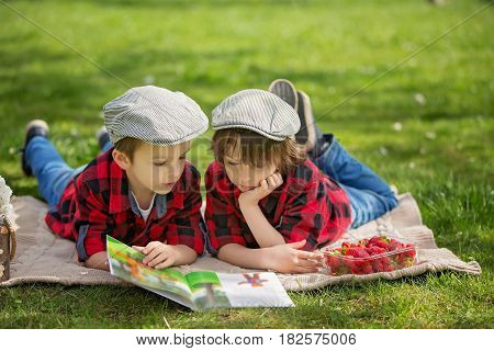 Two Children, Boy Brothers, Reading A Book And Eating Strawberries In The Park