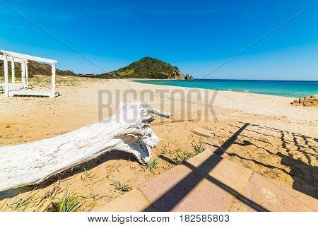 Driftwood in Cala Monte Turno in Sardinia