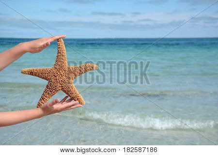 child holding a large starfish at the beach