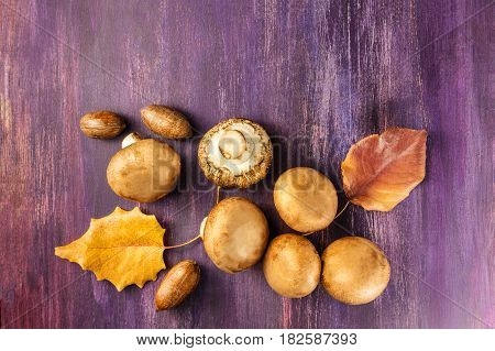An overhead photo of portobello mushrooms with pecan nuts and autumn leaves on a wooden board with a place for text