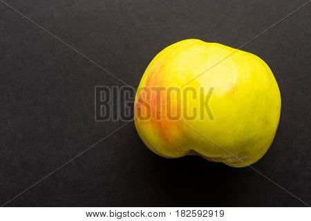 one apple as the isolated object closeup on black or against a dark background