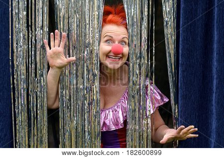 Fun loving redhead woman in a red clown nose peeking through a glittering silvery curtail with outspread hands and a smile of exaggerated delight and pleasure as she performs on stage
