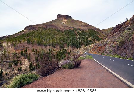 View of Teide National Park in Tenerife,Canary Islands,Spain.