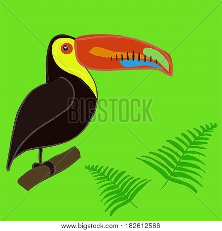 Cute hand drawn colorful toucan vector card