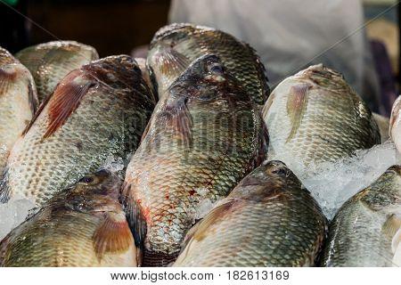 Tilapia fish fresh in ice sell on market.