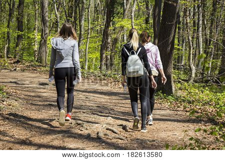 Three young girls walking in spring forest