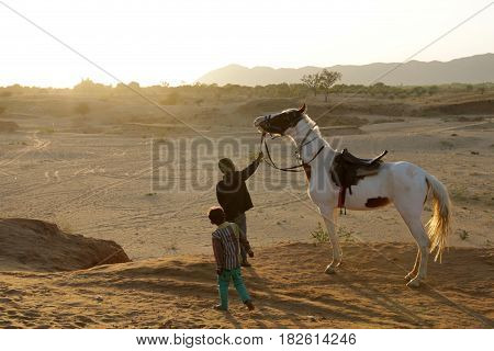 Horses are friends and helpers of man in work and leisure