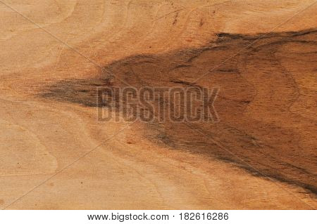 Background of old wood, texture old wood