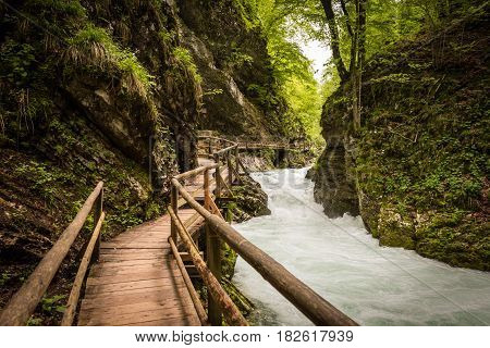 Mountain river and wooden bridge in Vintgar Gorge, Lake Bled natural park, Slovenia