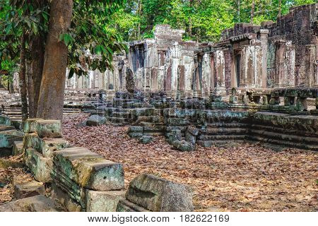 Prasat Bayon with smiling stone faces is the central temple of Angkor Thom Complex, Siem Reap, Cambodia. The temple is surrounded by tropical trees during the dry season the dry leaves on the ground