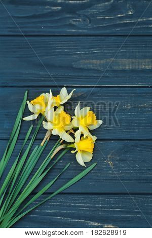 Flower Arrangement Of Daffodils