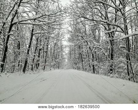 The Eternal Routes of Bulgaria - Winter