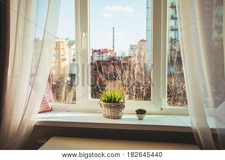 A cozy place on the window sill with cushions and flowers