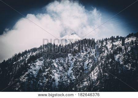 Cloud formation above a snow-capped mountain summit behind a forested slope with pine trees and snow in a winter landscape