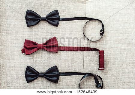 Three bow ties, two black and one red on a sofa. Team work, career, hipster, wedding concept