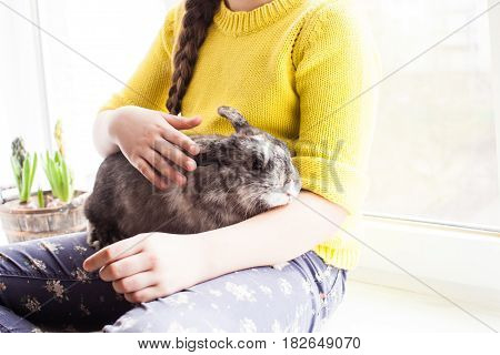 Girl holding a real Lop-eared rabbit and sitting on the windowsill