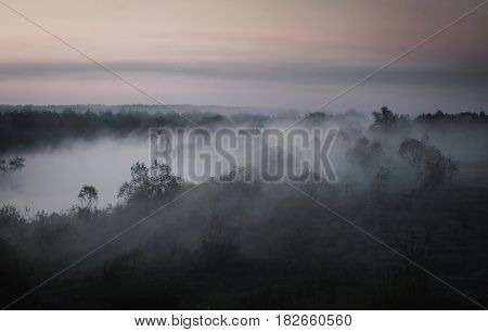 It begins a new day. The orange morning twilight sky. Fog over the valley. Mystical landscape. Water surface. Trees in the field. The gloomy picture in twilight. Landscape with twilight