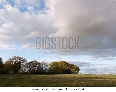 Wonderful Full Detail Landscape Shots Of The Farm In The Country With An Open Field And Some Trees A