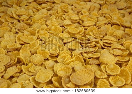 background of goldish corn flakes, tasty, natural top view