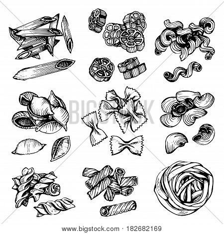 Italian Pasta vector sketch. Hand drawn vector illustration of macaroni. Sketch set of pasta.