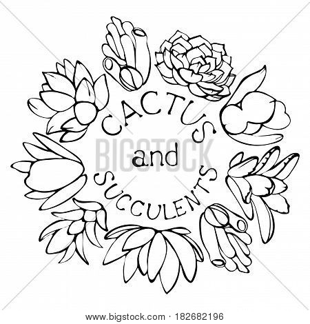 Sketch Succulents Vector & Photo (Free Trial)   Bigstock