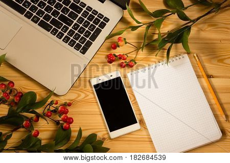 Smartphone, Laptop Computer And Hypericum Branches On Wooden Background