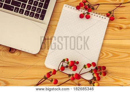 Laptop Computer, Space For Text And Hypericum Branches On Wooden Background