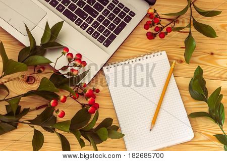 Blank Paper, Pencil And Hypericum Branches On Wooden Background