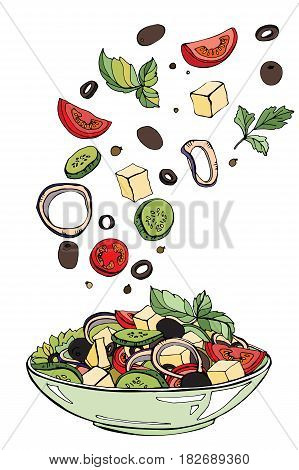 Fresh salad, organic food, vegetables. Color vector illustration of salad with greens, cherry tomatoes, onions, feta and cucumber on a white background.