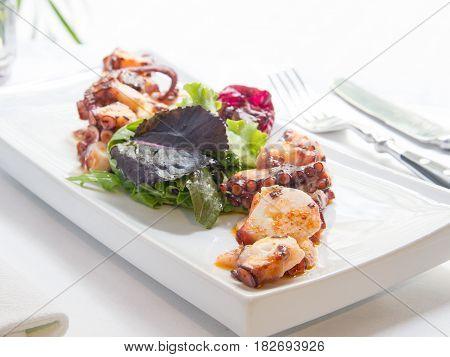 Pulpo salteado con ensalada y salsa de pimentón. Sautéed octopus with salad and paprika sauce.