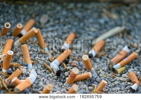 Mozzosons of cigarettes crushed in the sand of an ashtray