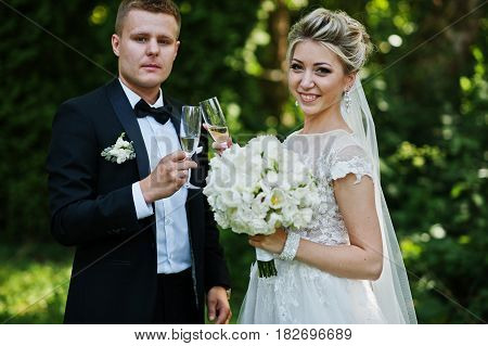 Stylish And Gorgeous Wedding Couple With Glasses Of Champagne.