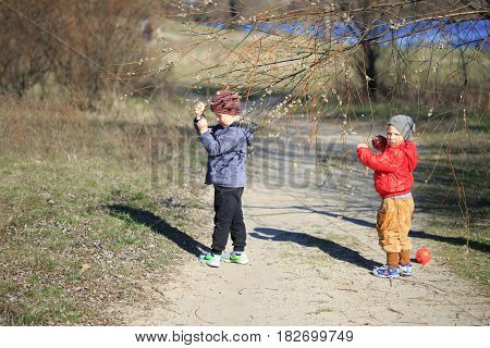 GOMEL BELARUS - 9 April 2017: Children are breaking the willow. Make a bouquet.