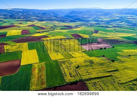 Aerial View Of Agricultural Land With Blooming In Northern Greece
