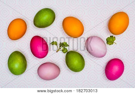 Shot from above: colorful Easter eggs and the first green leaves on a napkin on paper towels.