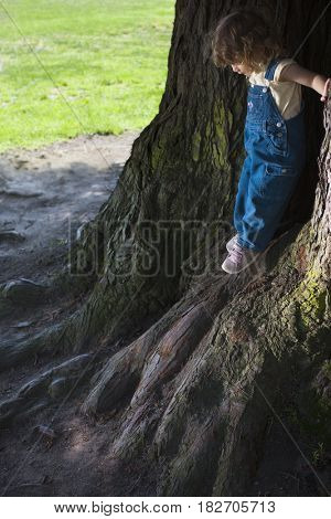 Mixed race girl leaning on tree trunks