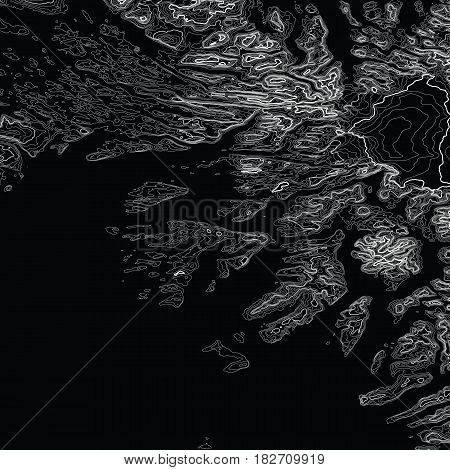 Vector abstract grayscale earth relief map. Generated conceptual elevation map. Isolines of landscape surface elevation. Geographic map conceptual design. Elegant background for presentations.