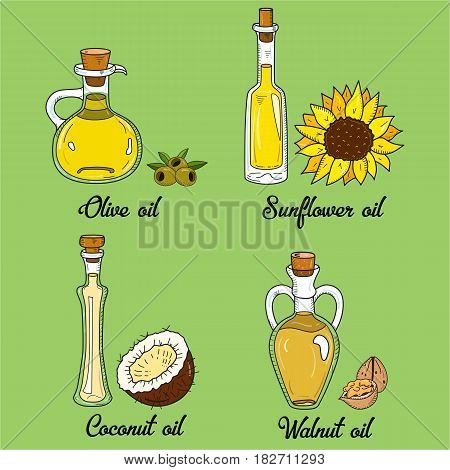 4 cooking oils in cute sketchy bottles. Hand drawn doodle set of edible vegetable food oil. With origin products olive, walnut, coconut and sunflower.