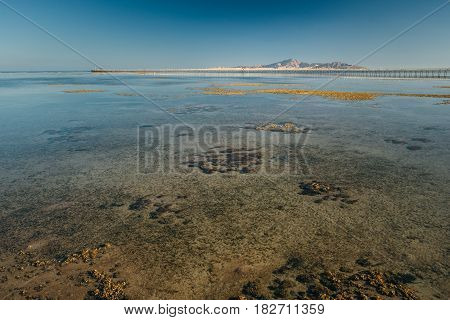 Landscape with view at the sea shore during tidal fall at sunny day with clear blue sky in Egypt. Travel to exotic country. Vacation at resort in Egypt
