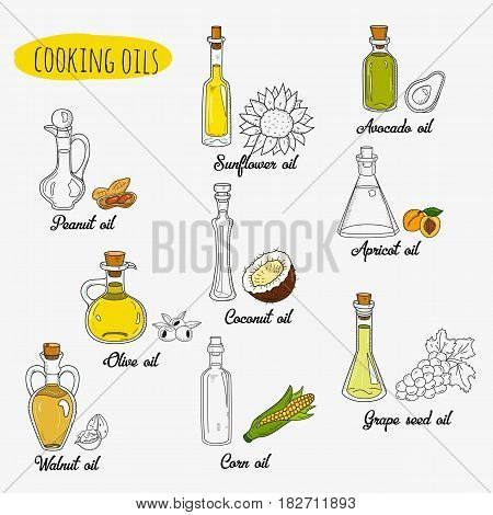 9 isolated doodle cooking oils. Mixed colored and outline set. Sketchy hand drawn vegetable oils. With origin products olive, apricot, corn, grape seed, walnut, coconut, avocado, peanut, sunflower