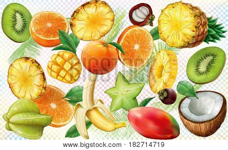various slices of tropical fruit on colored semi transparent background. Vector