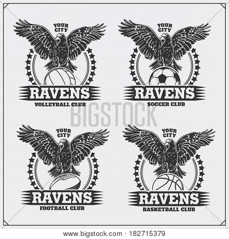 Volleyball, baseball, soccer and football badges and labels. Sport club emblems with raven.