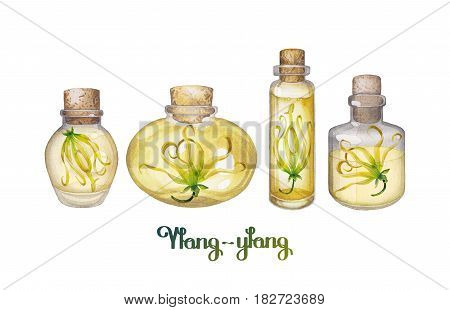 Watercolor ylang ylang oil isolated on white background. Hand painted bottles with small flowers inside . Herbal medicine and aroma therapy