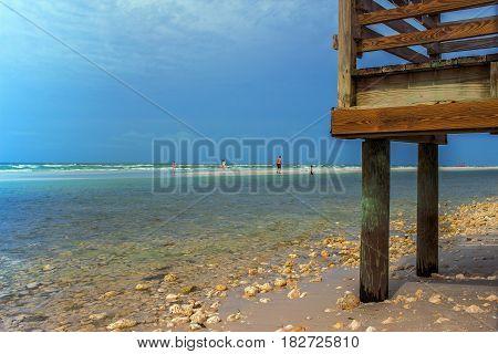 Beach located in Honeymoon Island State Park Florida State Honeymoon Island Dunedin Tampa