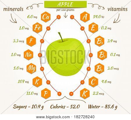 Apple infographics, nutrition facts, calories and analysis. The content of minerals and vitamins in apple. Vector illustration.
