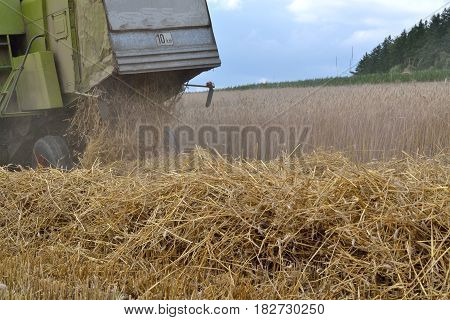 Combine harvesters for grain harvesting - detailed view Straw