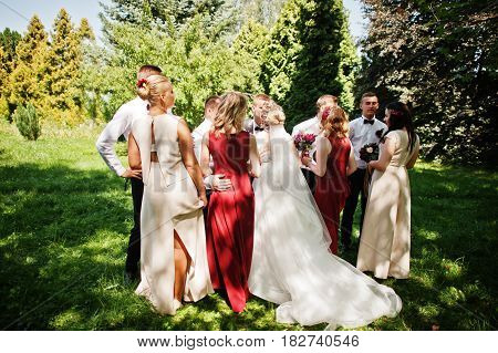 Elegance Wedding Couple With Bridesmaids And Best Mans Having Fun. Crowd Of Friends On Wedding.