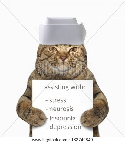 The cat vet is holding a sign that say Assisting with : stress neurosis insomnia depression. He wears a medical cap. White background.